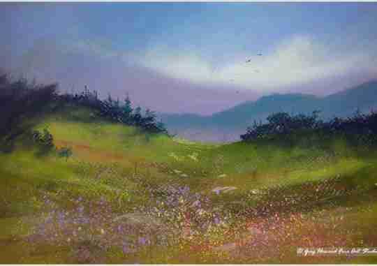 Alpine Meadow IV